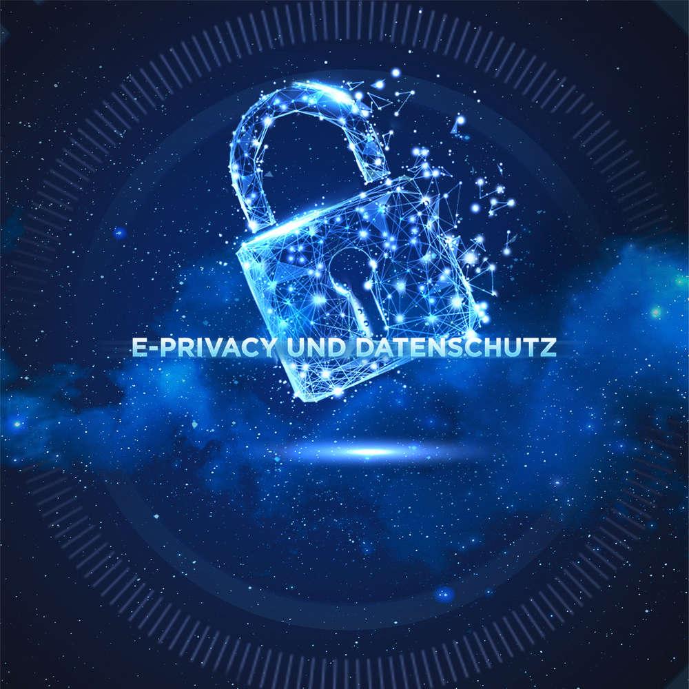 E-Privacy und Datenschutz - Datenschutz-Grundverordnung (DVSG)