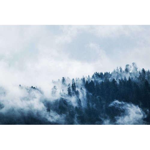 Von der Wolke in den Nebel?