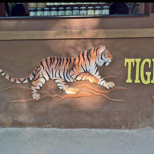 Dem Tiger auf der Spur - Satishs kleines Dschungelbuch