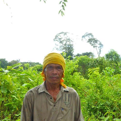Die letzten Dschungelnomaden auf Borneo