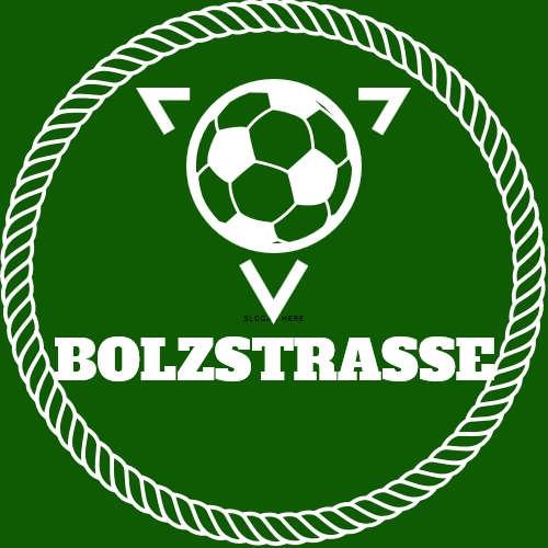 Bolzstrasse