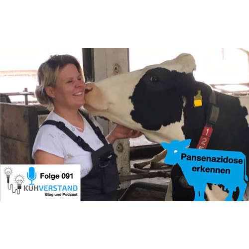 091| Pansenazidose erkennen