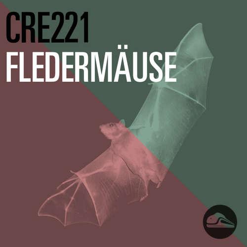CRE221 Fledermäuse