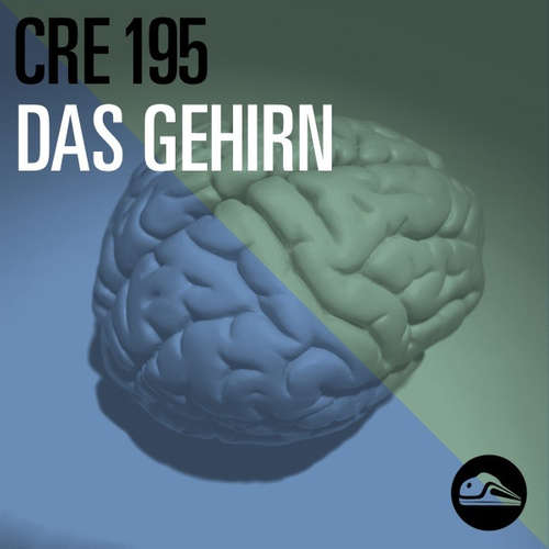 CRE195 Das Gehirn