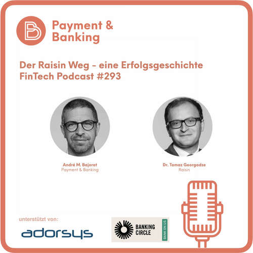 Der Raisin Weg - eine Erfolgsgeschichte - Fintech Podcast #293