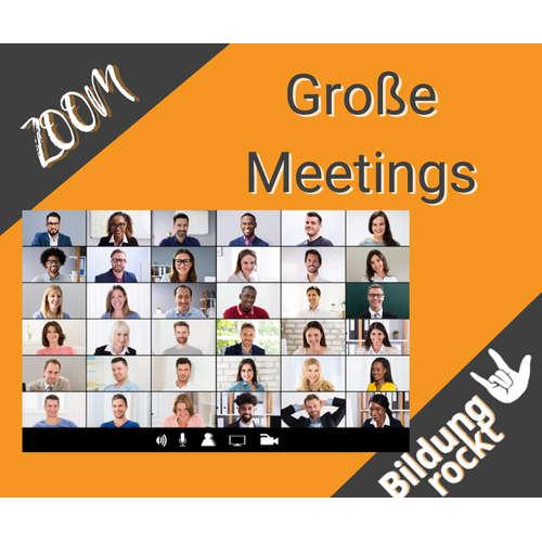 ZOOM  - Große Meetings 💻