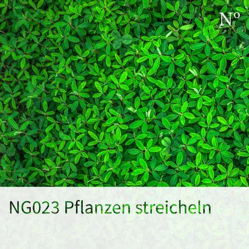 NG023 Pflanzen streicheln