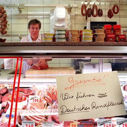 BSE-Krise: Seehofer plant Rindfleisch-Stopp aus Großbritannien