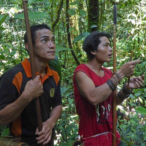 Die letzten Regenwald-Nomaden Eine Suche im Herzen Borneos