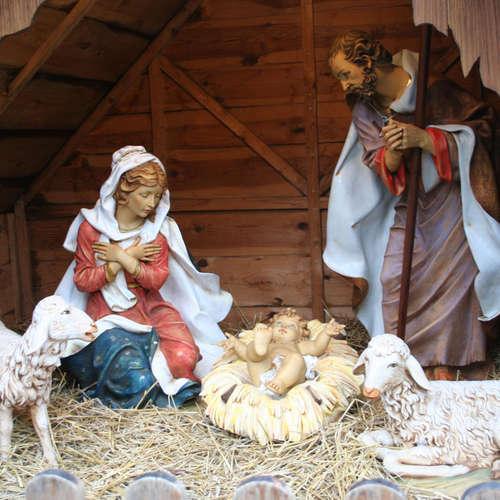 Die Weihnachtskrippe - Szenerie der Menschwerdung