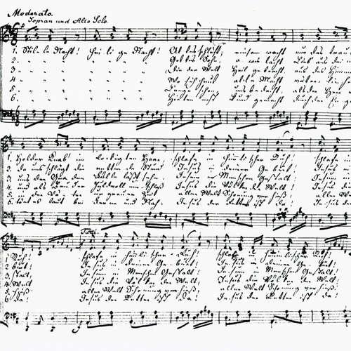 Stille Nacht - Ein Lied, 300 Übersetzungen und viele Geschichten