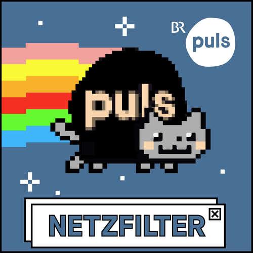 Netzfilter