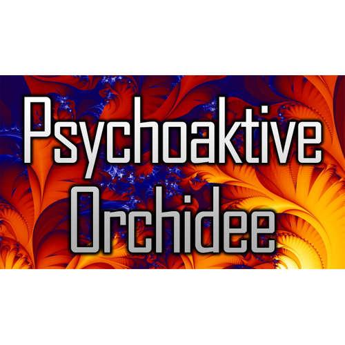 005 – chronic – Psychoaktive Orchidee