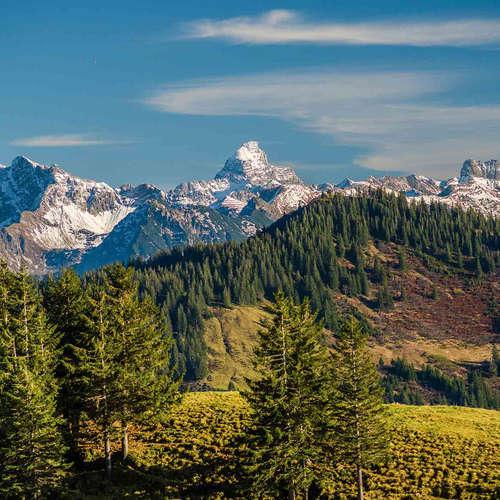 Von schwingenden Bergen