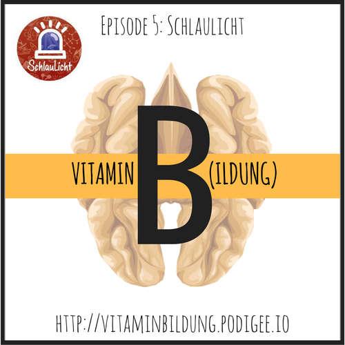 VitB005 Vitamin B(ildung): Schlaulicht