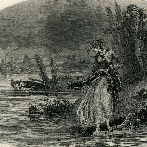 Charles Dickens: Lebensgeschichte und gesammelte Erfahrungen David Copperfields des Jüngeren (5/5)