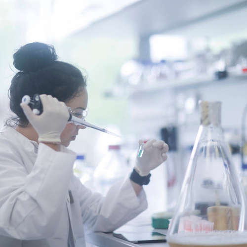 Das Wissenschaftsprekariat – Junge Forscher ohne Perspektive