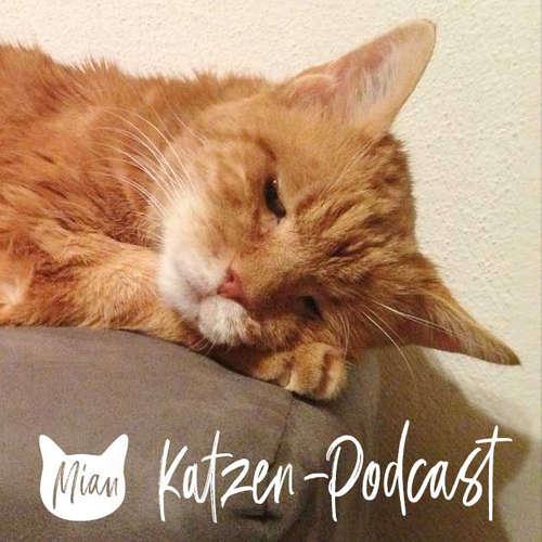 123 Tipps für Katzensenioren - so machst du deiner Katze das Leben leichter, schöner und lebenswerter