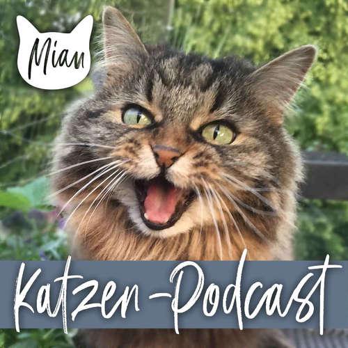 017 Welche Risiken für Katzen gibt es bei der Schädlingsbekämpfung? Interview mit dem Profi 3/3