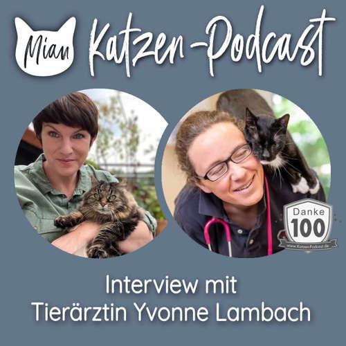 """100 Neuigkeiten zur """"katzenfreundlichen Tierarztpraxis - Interview mit Tierärztin Yvonne Lambach (Jubiläumsfolge)"""