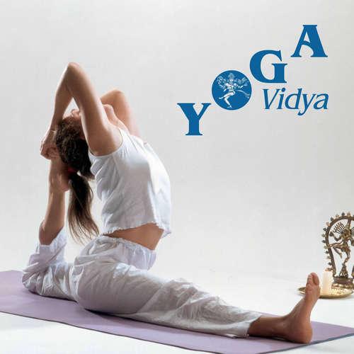 Yoga für den Rücken – Yogastunde 47 Minuten für alle mit Vorkenntnissen