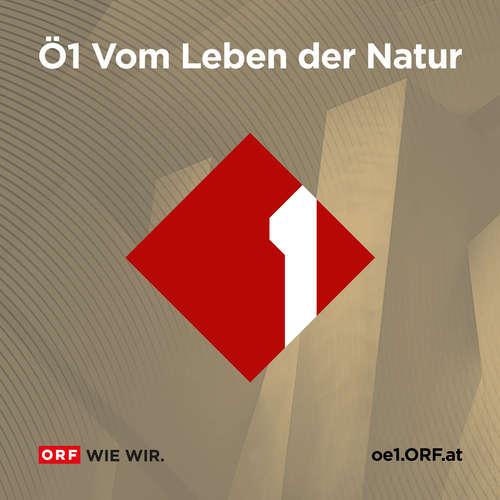 Vom Leben der Natur (30.11.2020)