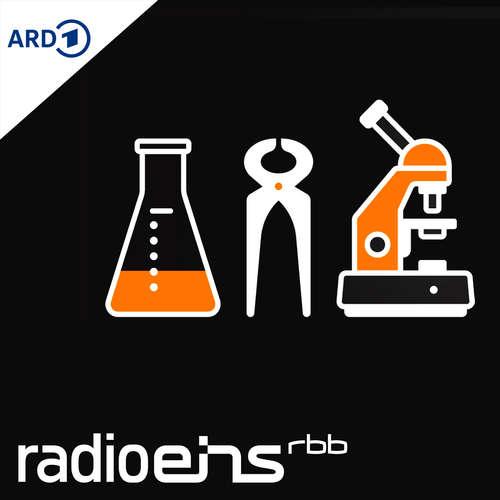 Die Profis | radioeins